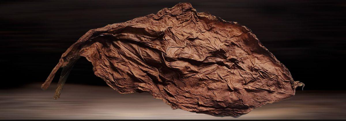 Premium Grabba Tobacco Leaf
