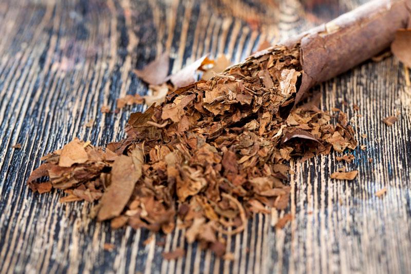 shredded tobacco fillers